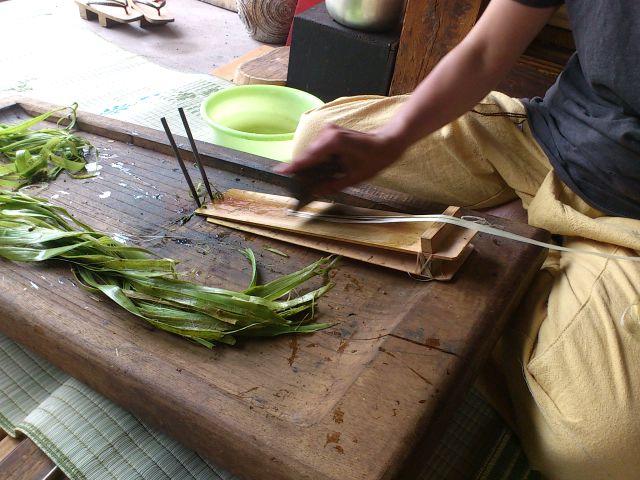 @奥会津昭和村。収穫した苧麻を繊維にする『お引き』。選挙フェスの褌とTシャツに付けたタグの紐はこれです